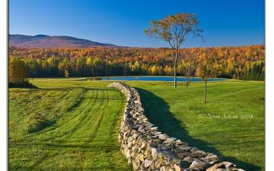 Trucs et astuces pour photographier de belles photos d'automne