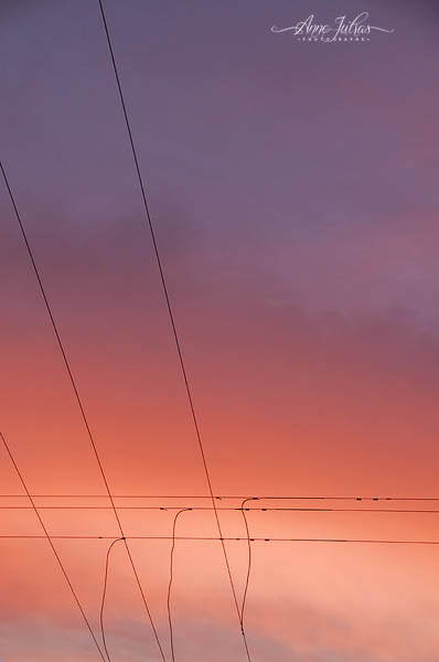 ciel, minimaliste, photo contemplative, rose, photo